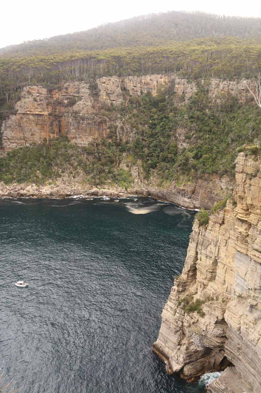 Another contextual look along the innermost part of the sea cliffs of Waterfall Bay directly below the lookouts