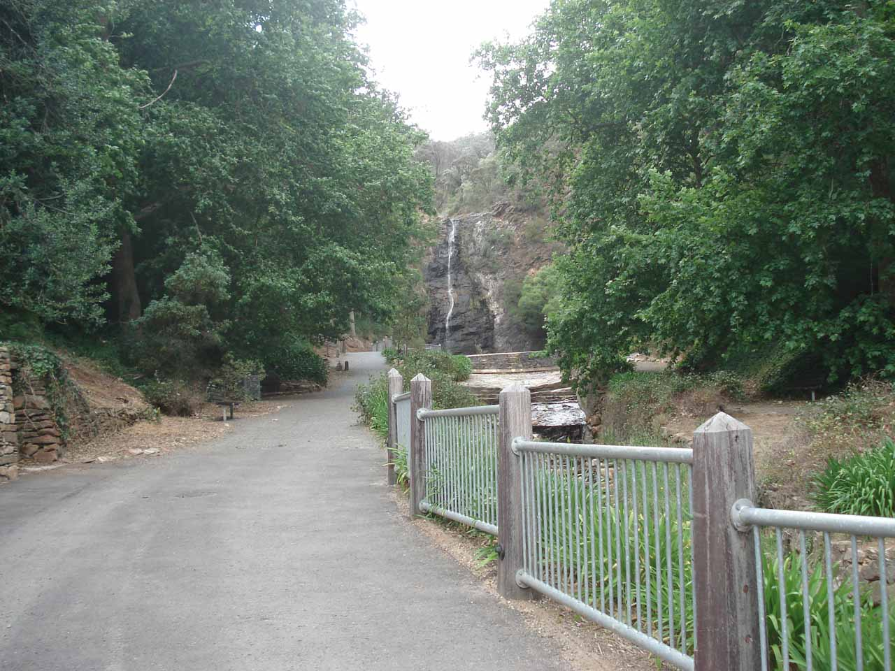 The First Falls in the Waterfall Gully