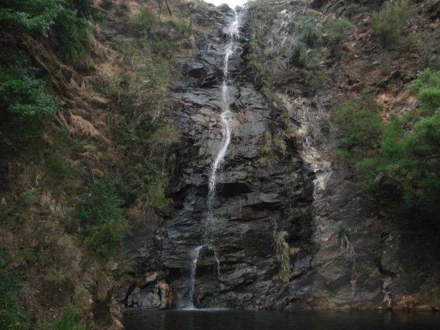 Waterfall_Gully_012_jx_11202006