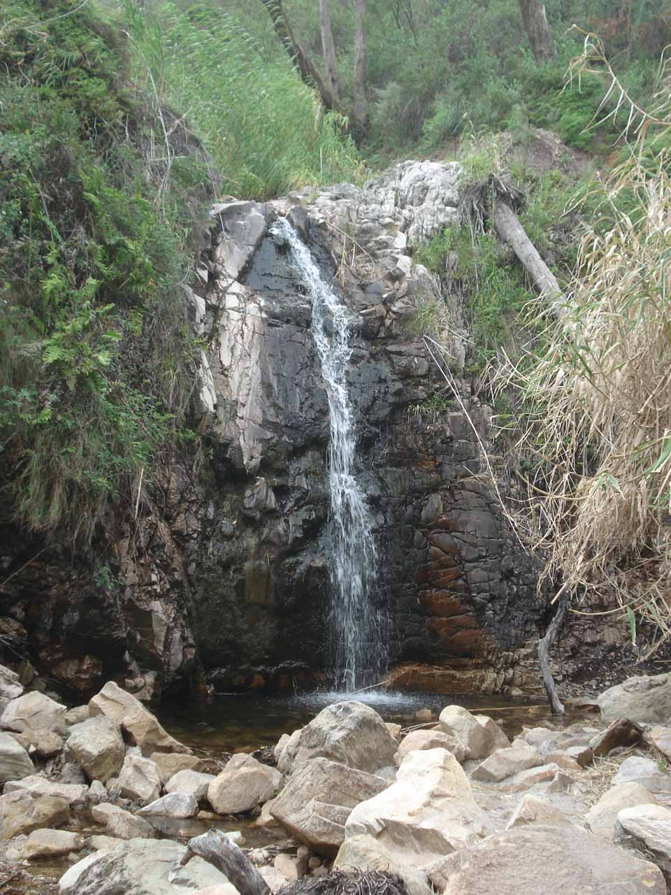 This was the Second Falls of Waterfall Gully, which was further upstream of the First (and main) Falls