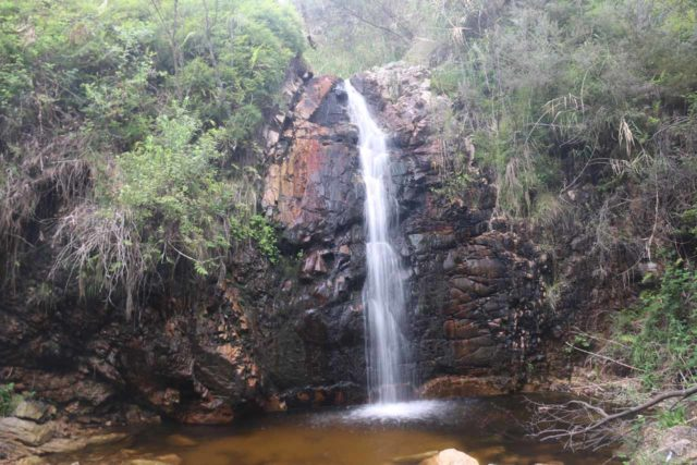 Waterfall_Gully_17_059_11102017 - The Second Falls
