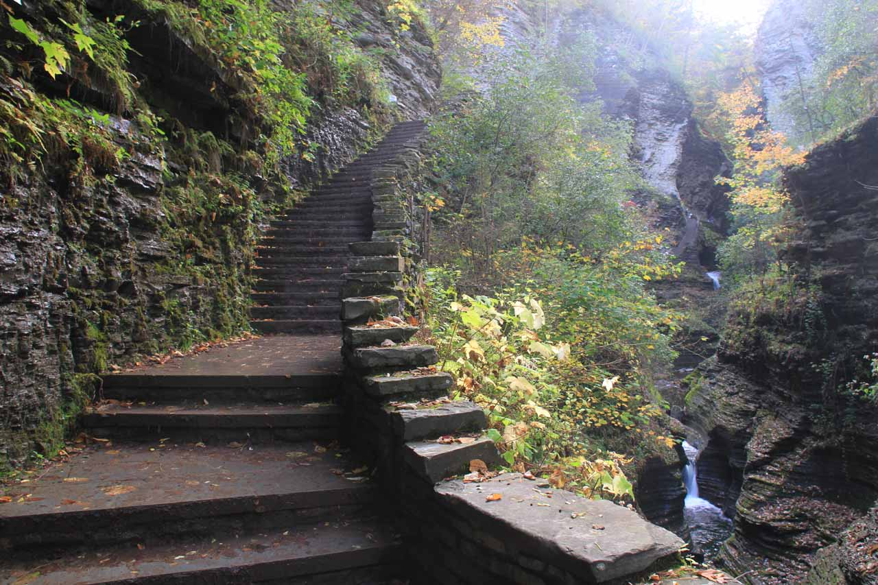 Ascending Couch's Stairs in the Gorge Trail
