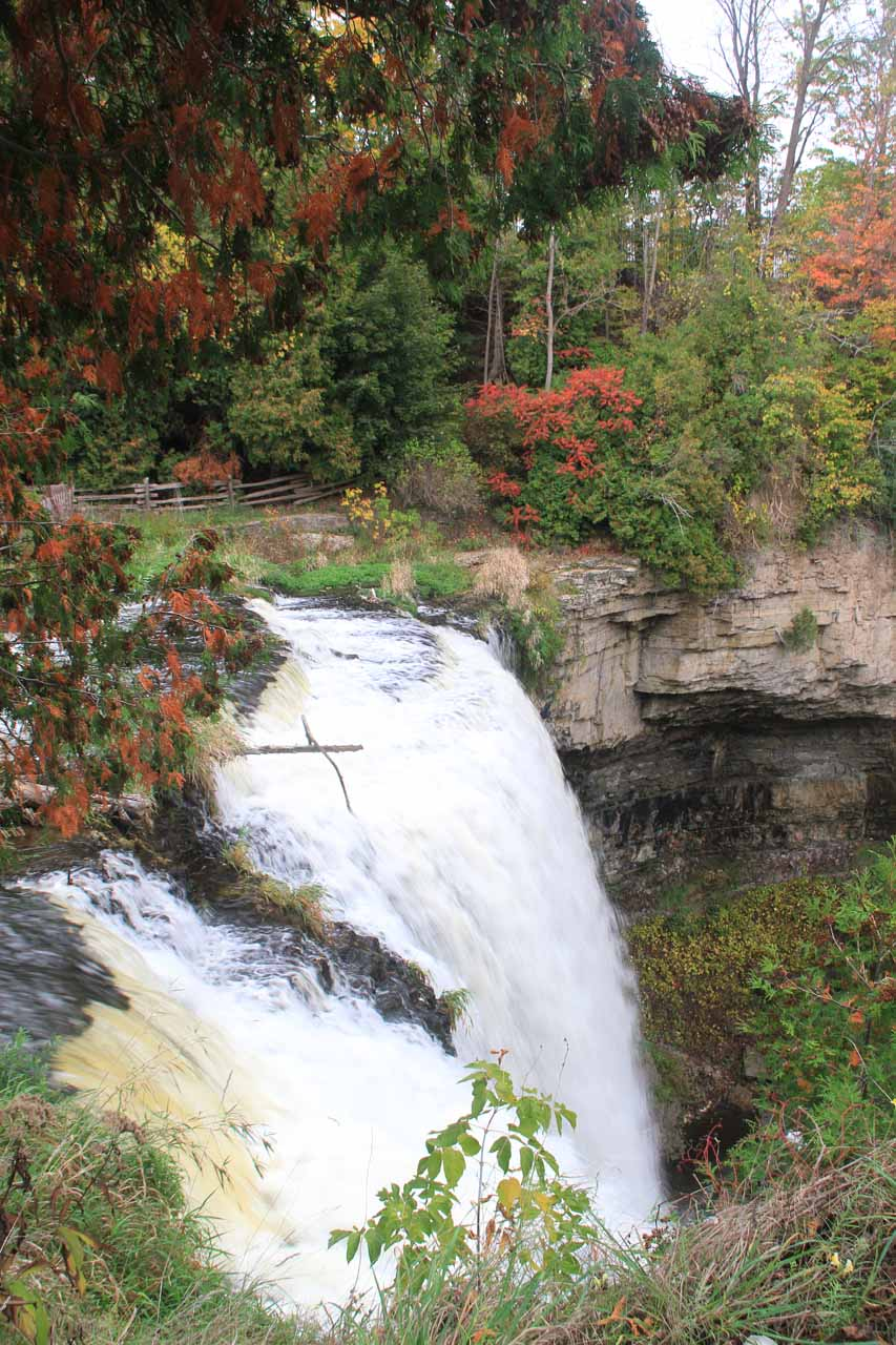Looking over the brink of Webster's Falls
