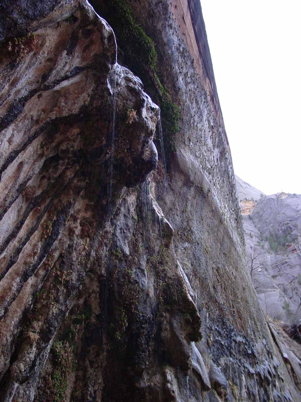 Looking up at Weeping Rock in March 2003