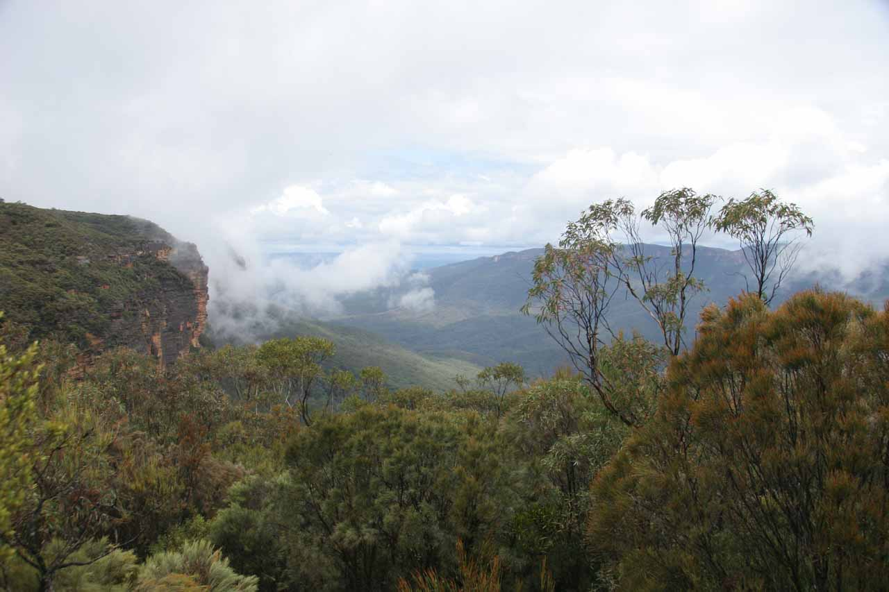 This was the Falls Lookout view though there wasn't much of the Wentworth Falls to see from here