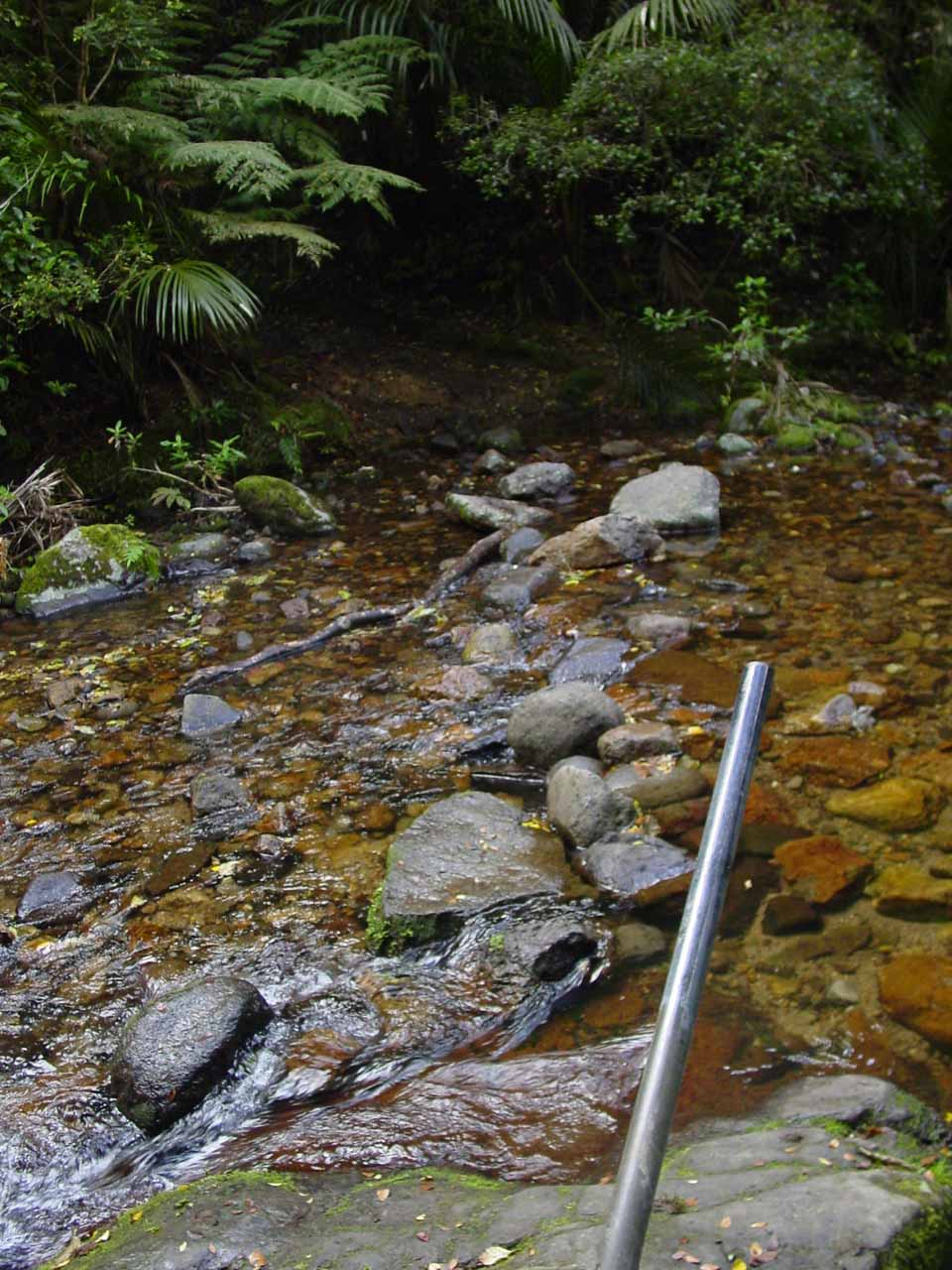 This was the second stream crossing that I encountered en route to Wentworth Falls