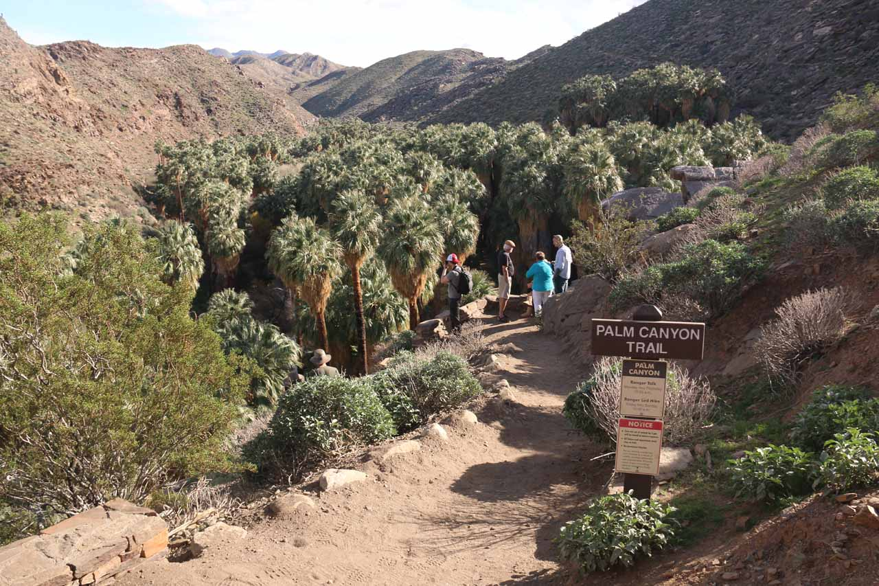 The trailhead for Palm Canyon Trail