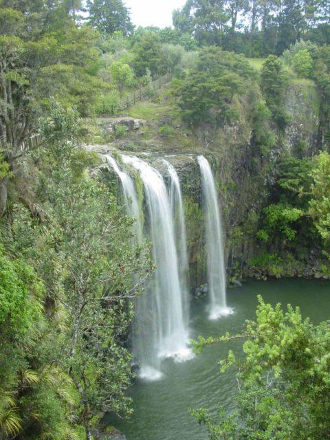 Whangarei_Falls_007_11062004 - Whangarei Falls