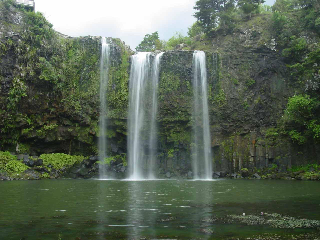 Picnic Island New Zealand