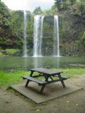 Whangarei_Falls_031_11062004 - Whangarei Falls and picnic table at the bottom of the walk