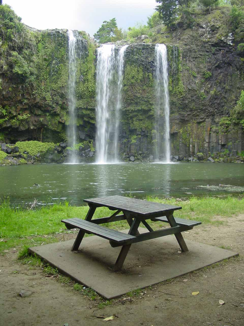 Whangarei Falls and picnic table