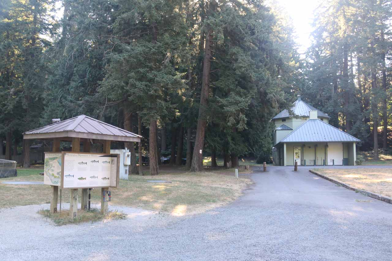 Some interpretive signs discussing the fishery and the types of fish at Whatcom Falls Park
