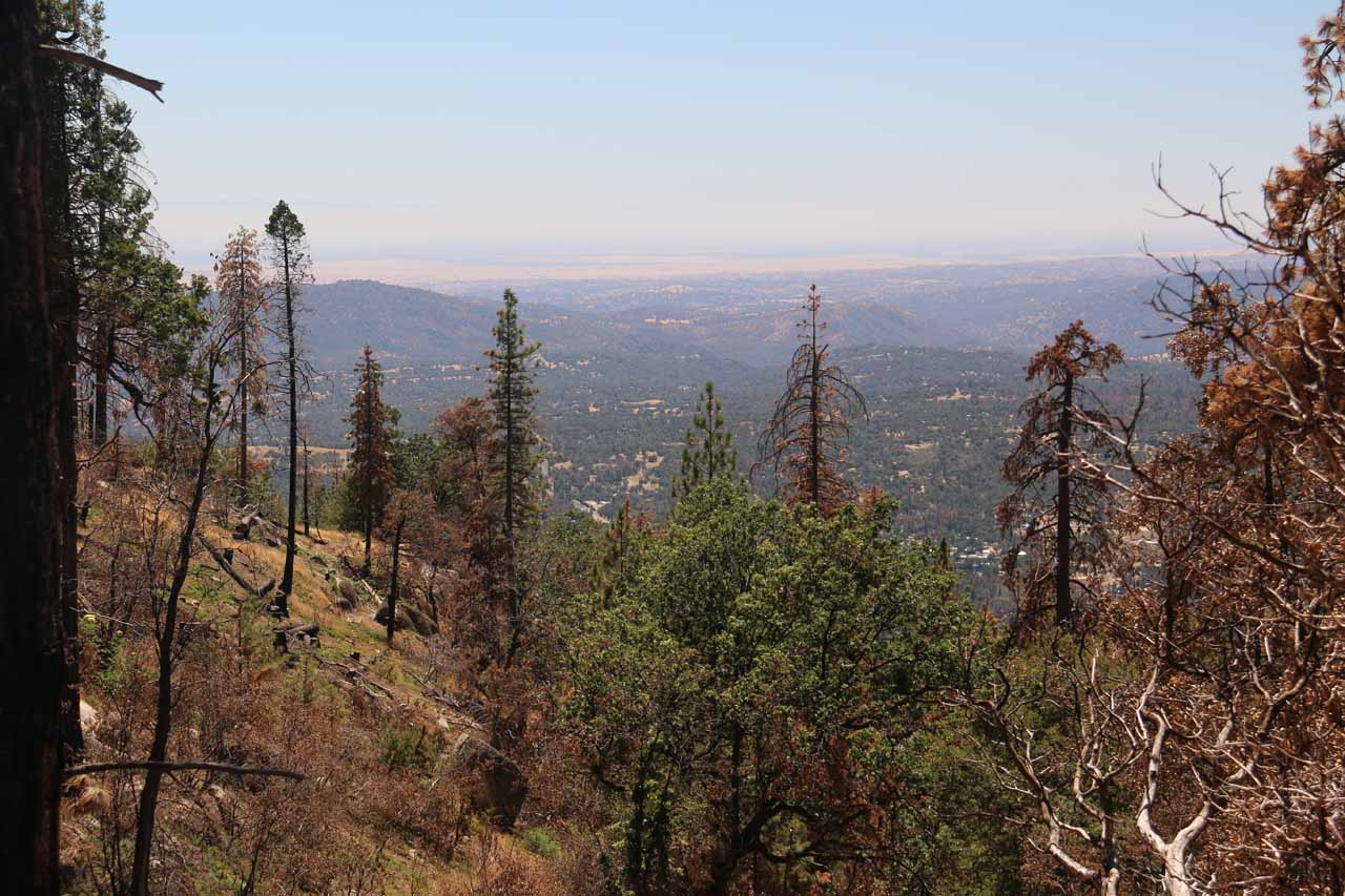 As the road was climbing, we managed to get some attractive views downslope in the direction of the Central Valley