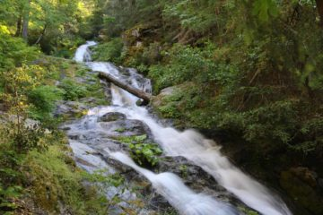 Whiskeytown_Falls_085_06182016
