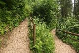 Wildenstein_Waterfall_021_07102018