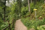 Wildenstein_Waterfall_023_07102018 - At a trail junction where we kept going straight to the Wildenstein Waterfall instead of continuing uphill on the right towards Hochobir and possibly the Wildensteiner Castle ruins