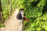 Wildenstein_Waterfall_071_07102018 - Julie and Tahia picking wild raspberries along the Wildensteiner Waterfall Trail