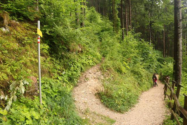 Wildenstein_Waterfall_076_07102018 - This was the trail junction where the uphill trail on the left continued towards Hochobir as well as the Wildensteiner Castle ruins that was apparently destroyed by earthquake in 1348