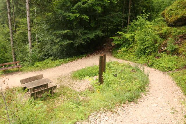 Wildenstein_Waterfall_079_07102018 - Looking down at the false trail going into the overgrowth right at the switchback by the picnic table and sign along the Wildenstein Waterfall Trail