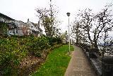 Willamette_Falls_Promenade_016_04072021 - Attractive homes flank the McLoughlin Promenade