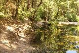 Willow_Creek_185_08172019