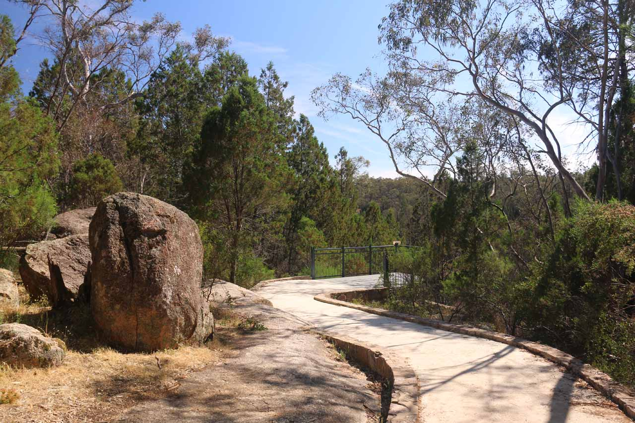 The short walk leading to the Woolshed Falls Lookout