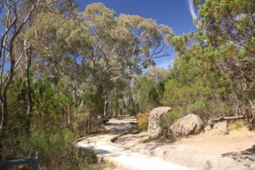 Woolshed_Falls_17_004_11202017