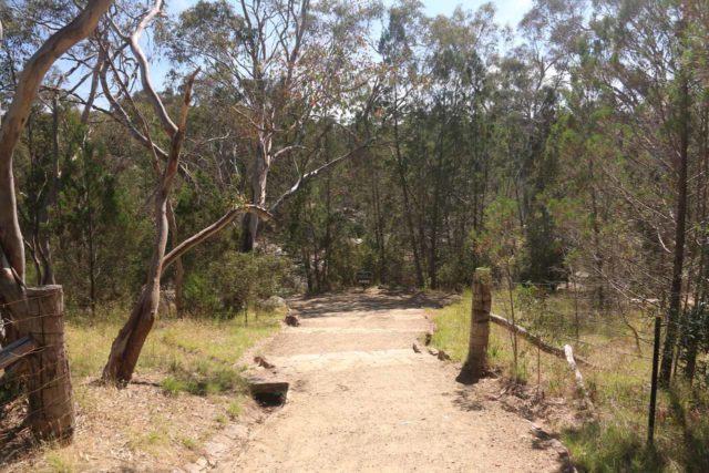 Woolshed_Falls_17_038_11202017 - The start of the short track leading me to the top of the lowermost drop of Woolshed Falls