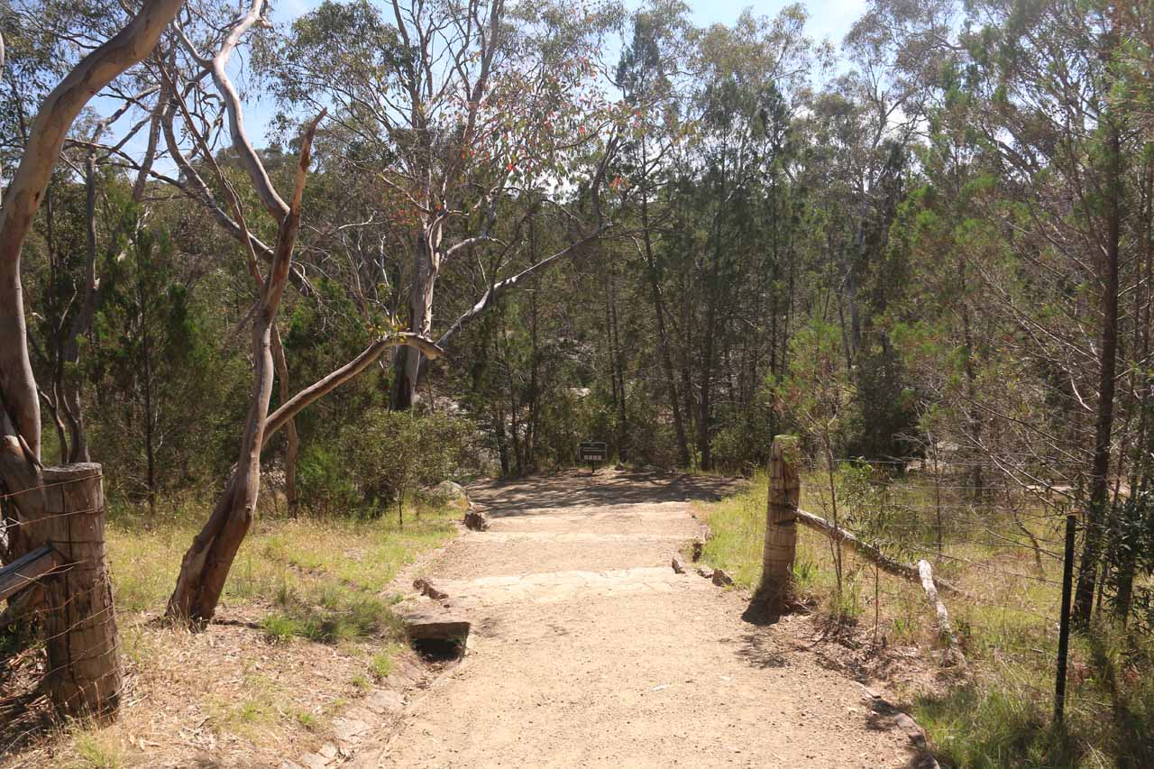 On the track leading me closer to Woolshed Falls