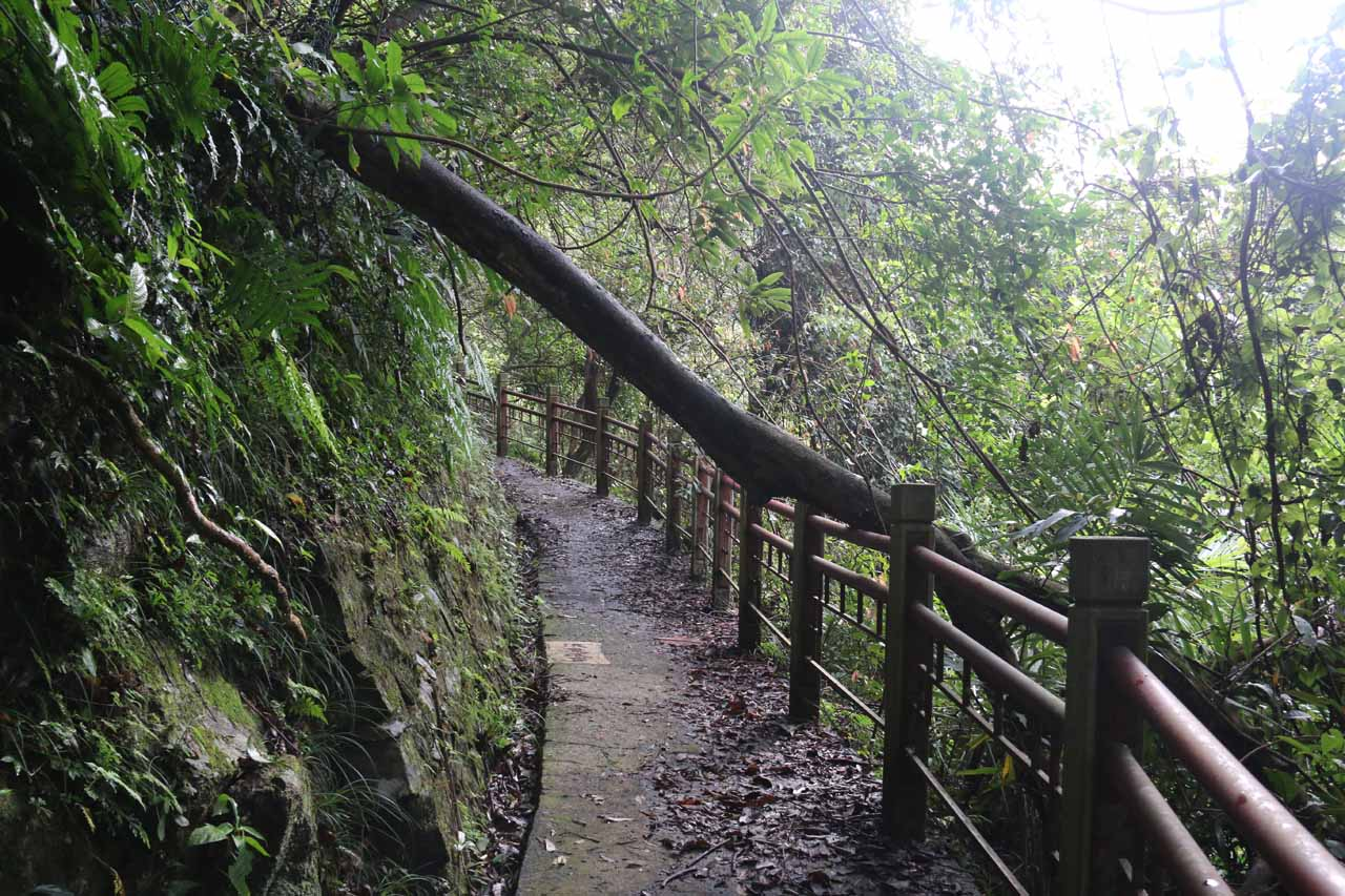 This part of the Wufengchi Trail flattened out and hugged a ledge while exhibiting some trail damage