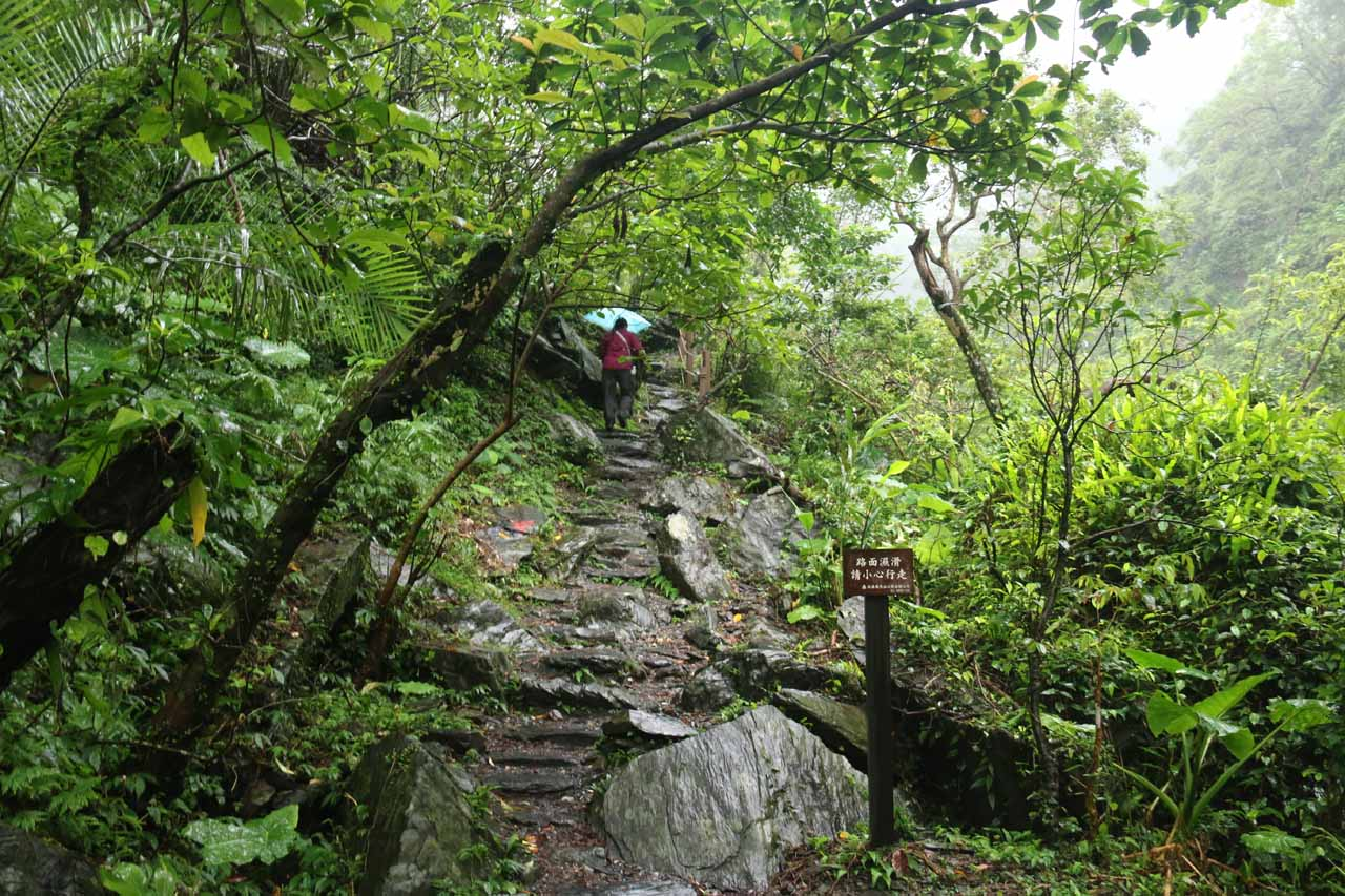 This was one of the few rocky parts of the Xinliao Falls Trail