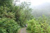 Xinliao_Waterfall_042_11012016