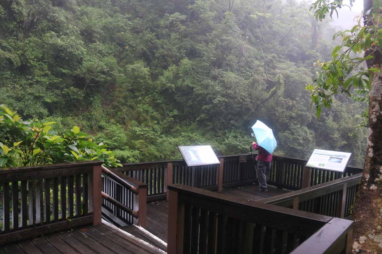 The wooden viewing deck for the Xinliao Waterfall