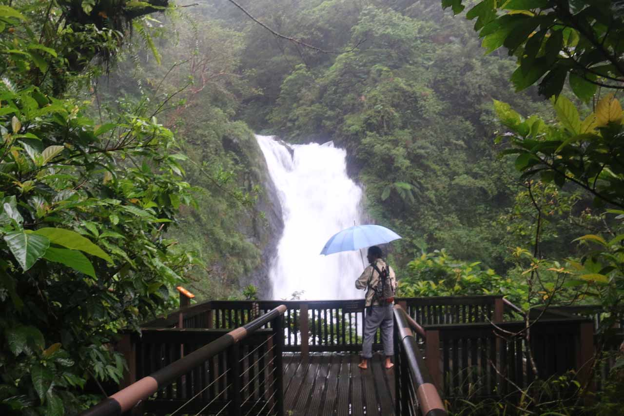 This fellow was exercising in the rain while we were at the Xinliao Waterfall