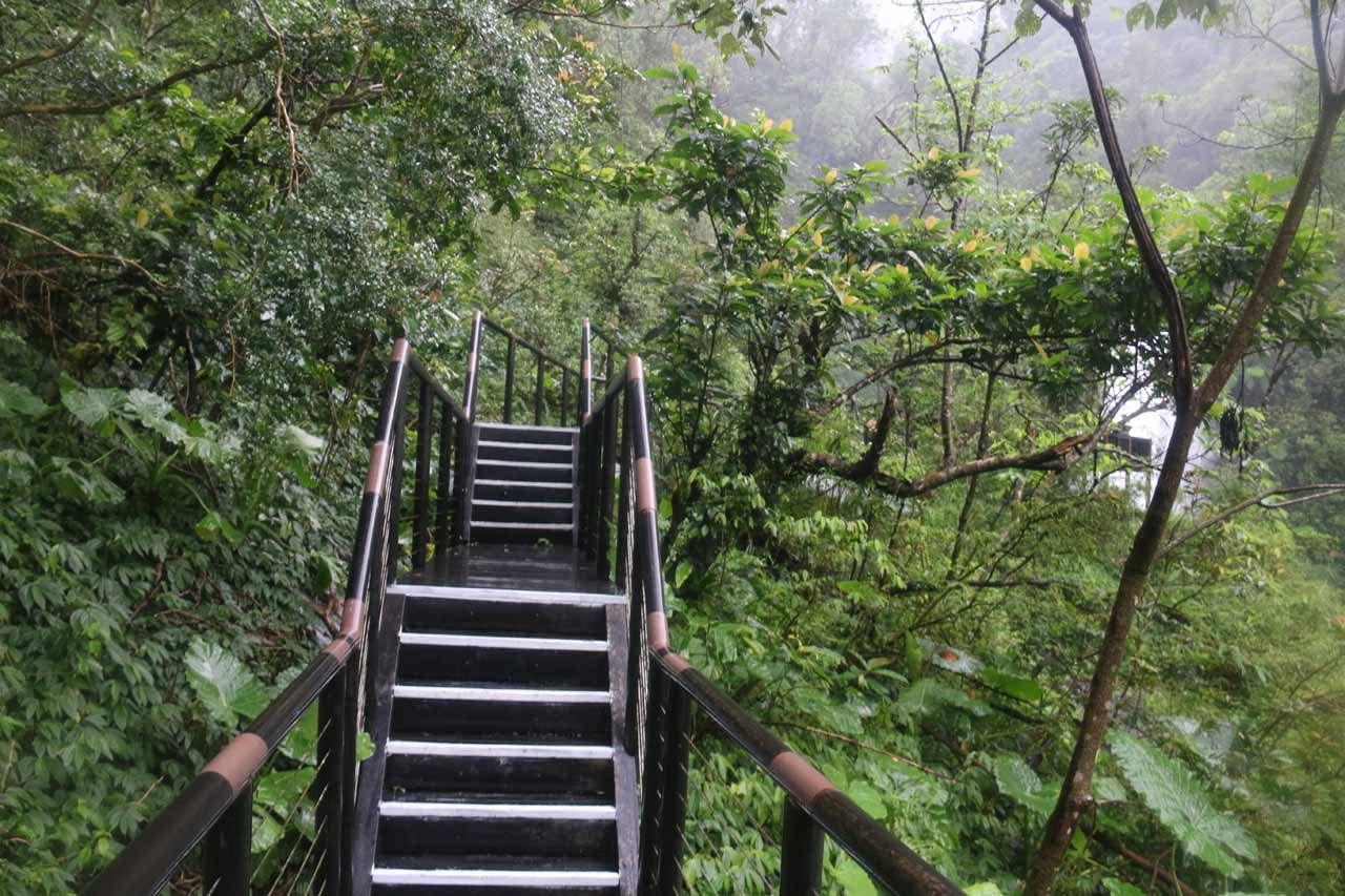 The wooden plank trail leading right up to the lookout deck for the Xinliao Waterfall