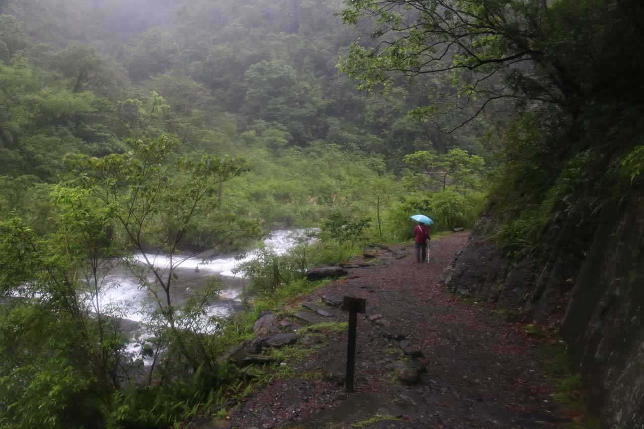 Continuing along the gentle trail accompanied by the sounds of rushing water and rain