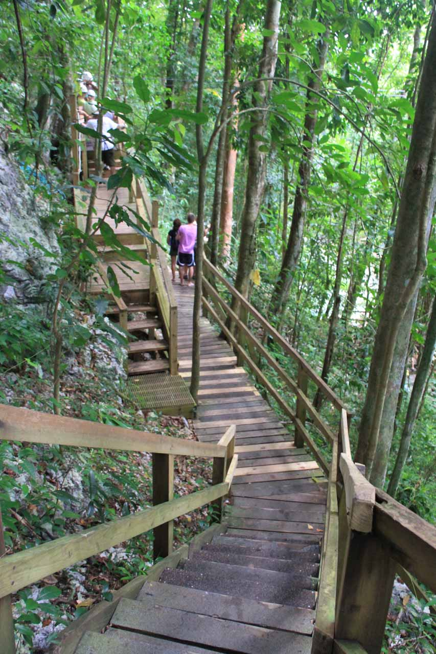 The wooden walkway leading to the uppermost falls that we can access as well as the zipline tour