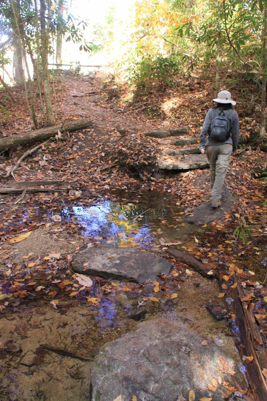 Julie crosses the creek (more like a puddle) atop Yahoo Falls