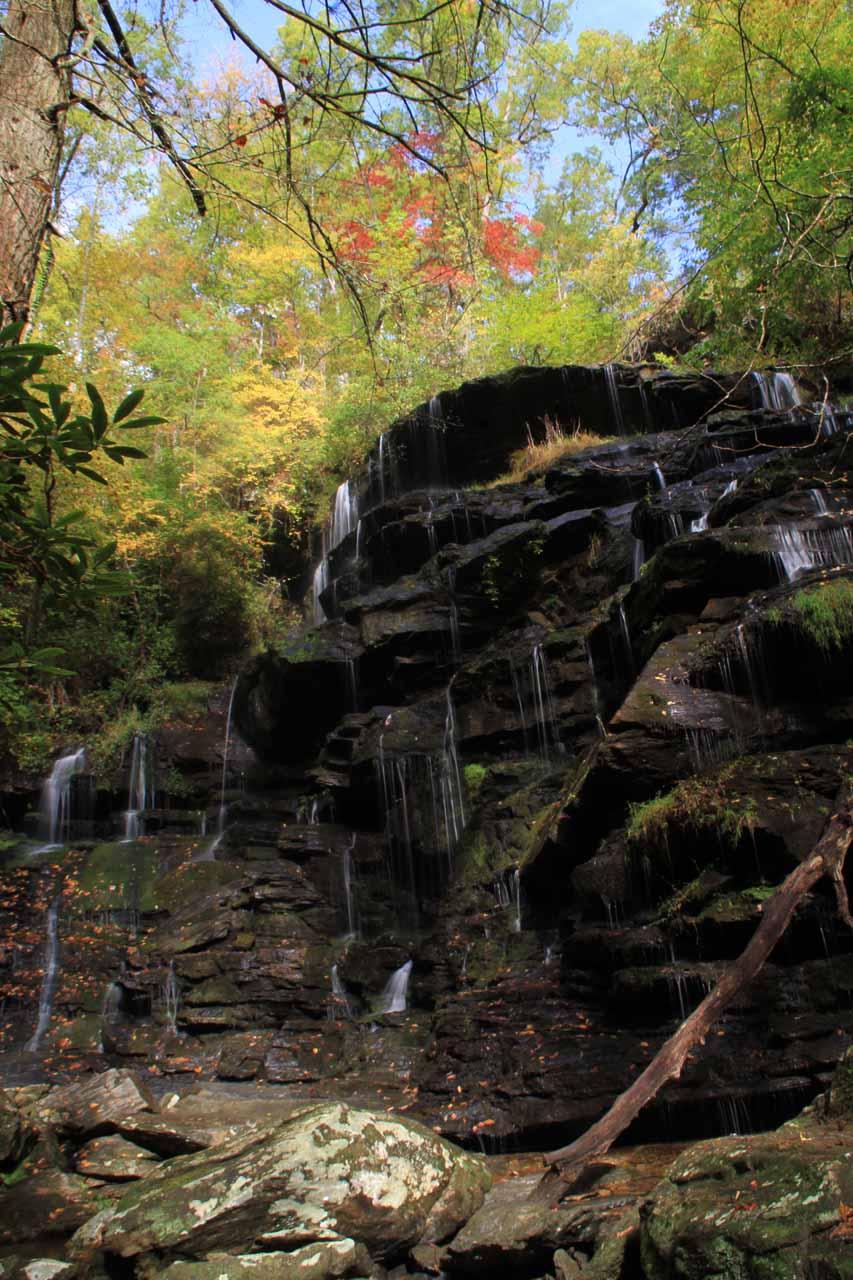 Closer look at Yellow Branch Falls
