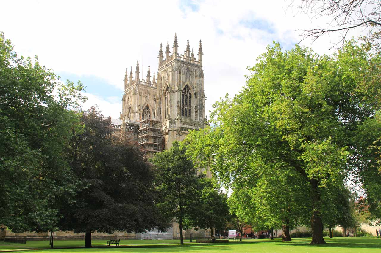 Looking back towards York Minster from a garden area to its north