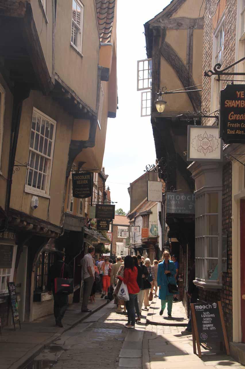 At the Shambles of York