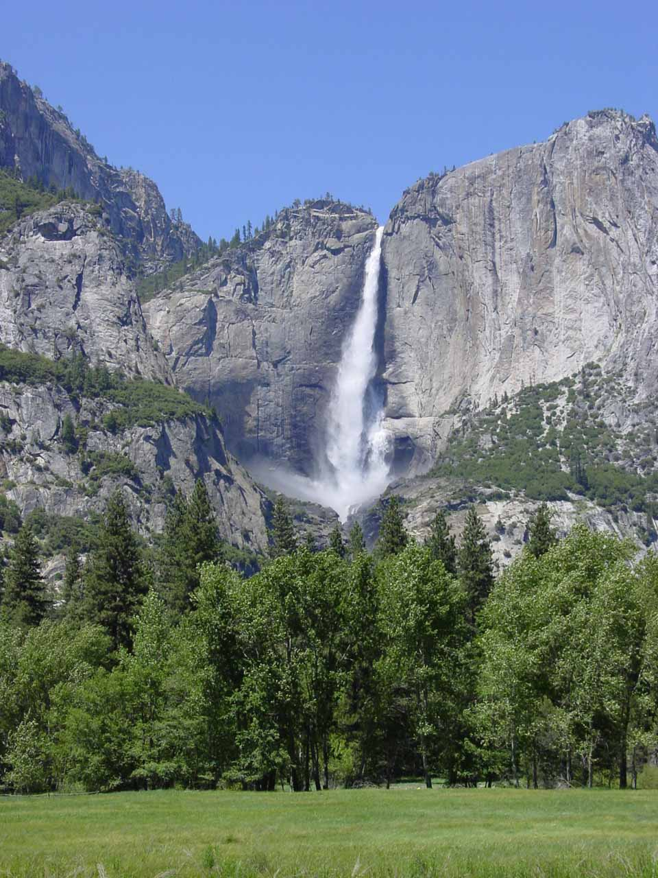 Upper Yosemite Falls seen from a meadow near signpost V19