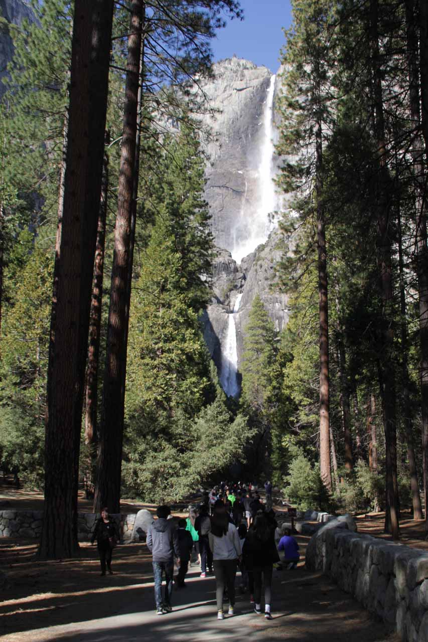 Back at the familiar paved path to the base of Yosemite Falls