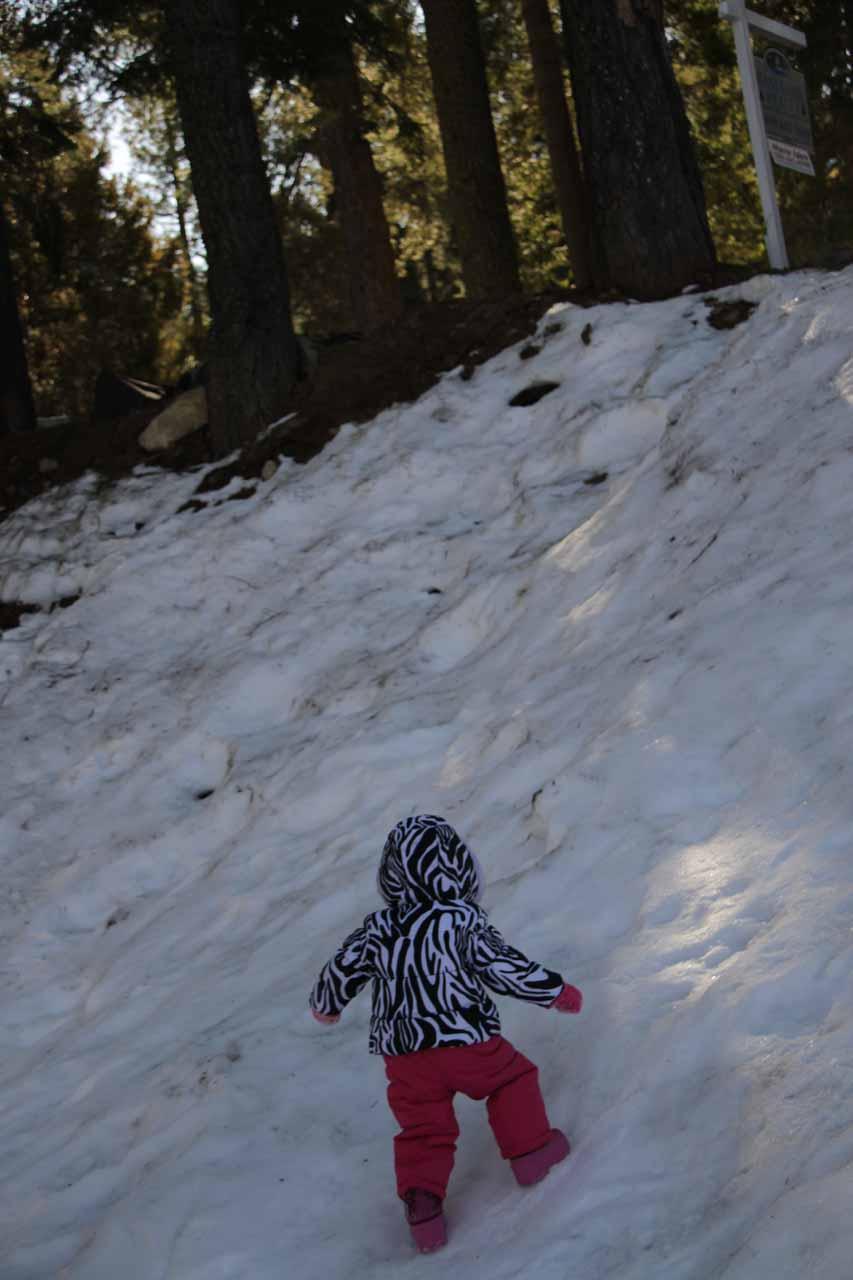 Tahia balancing herself in the snow