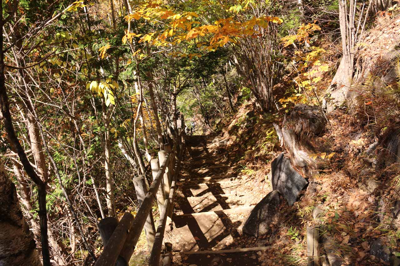 After reaching a trail junction, we then had to descend these steps to get down to the level of the Koonogawa