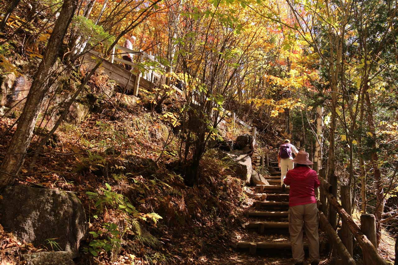 After having our fill of the Zengoro Falls, we then had to get all that elevation loss back by going up these steps