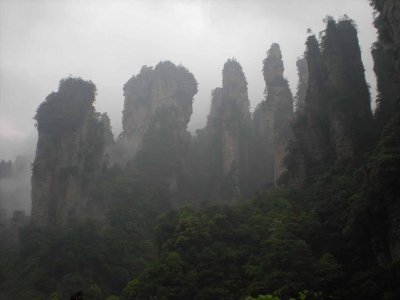Looking up at more pinnacles from the bottom of the elevator at Zhangjiajie