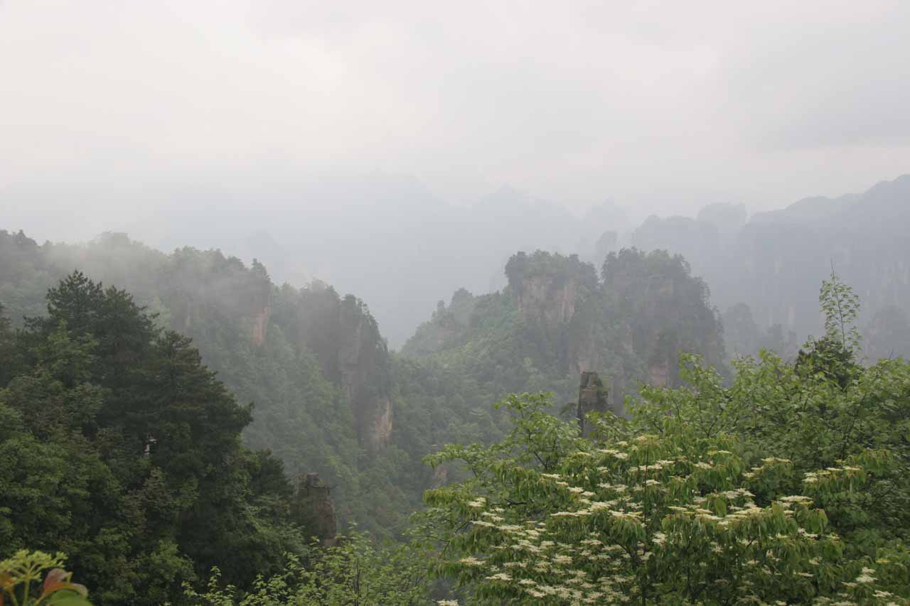 The views starting to clear up in the Wulingyuan part of the park