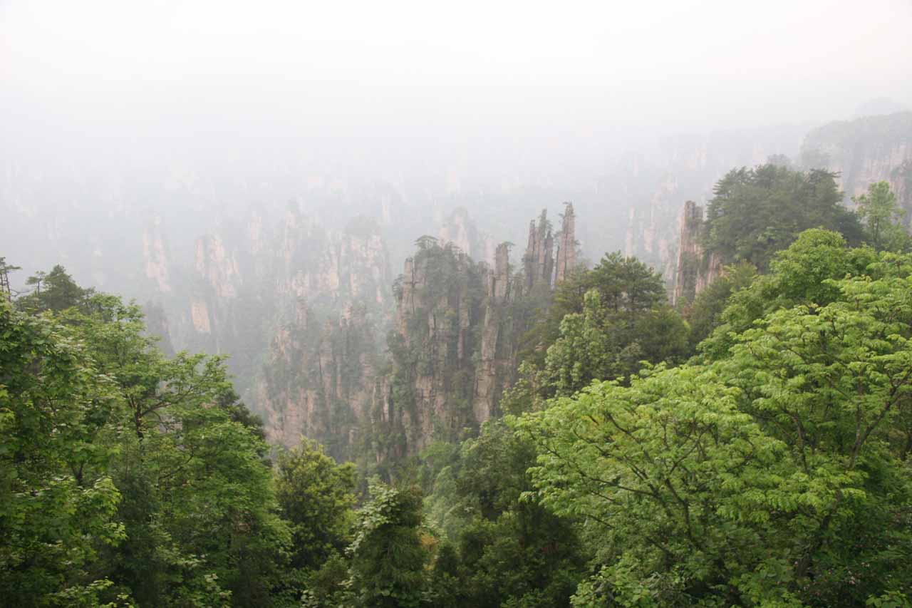 Still more views of pinnacle-like spires at Zhangjiajie