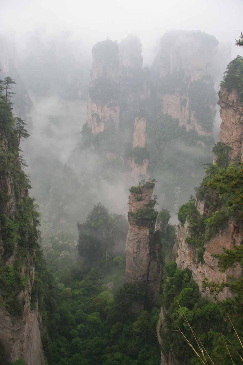 More pinnacle-like scenery at Zhangjiajie